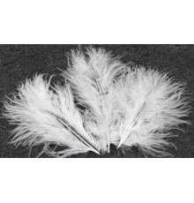 Lot de 20 Plumes Décoratives