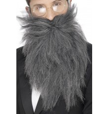 Barbe longue grise homme