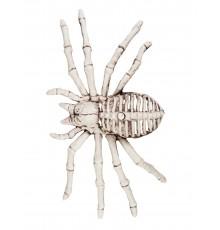 Décoration squelette d'araignée 12 X 24 cm Halloween