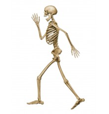 Décoration squelette marchant d'Halloween beige 94 cm