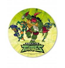 Disque azyme Tortues Ninja 20 cm