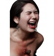 Fausse blessure pieu de vampire adulte Halloween