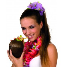 Noix de coco Hawaï