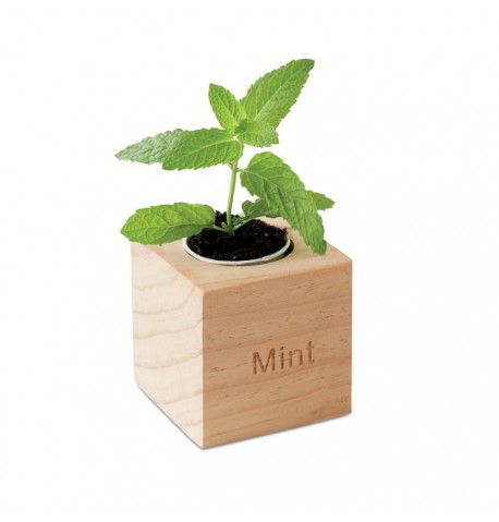 Pot avec coffret en bois
