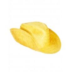 Chapeau de Paille Style Western