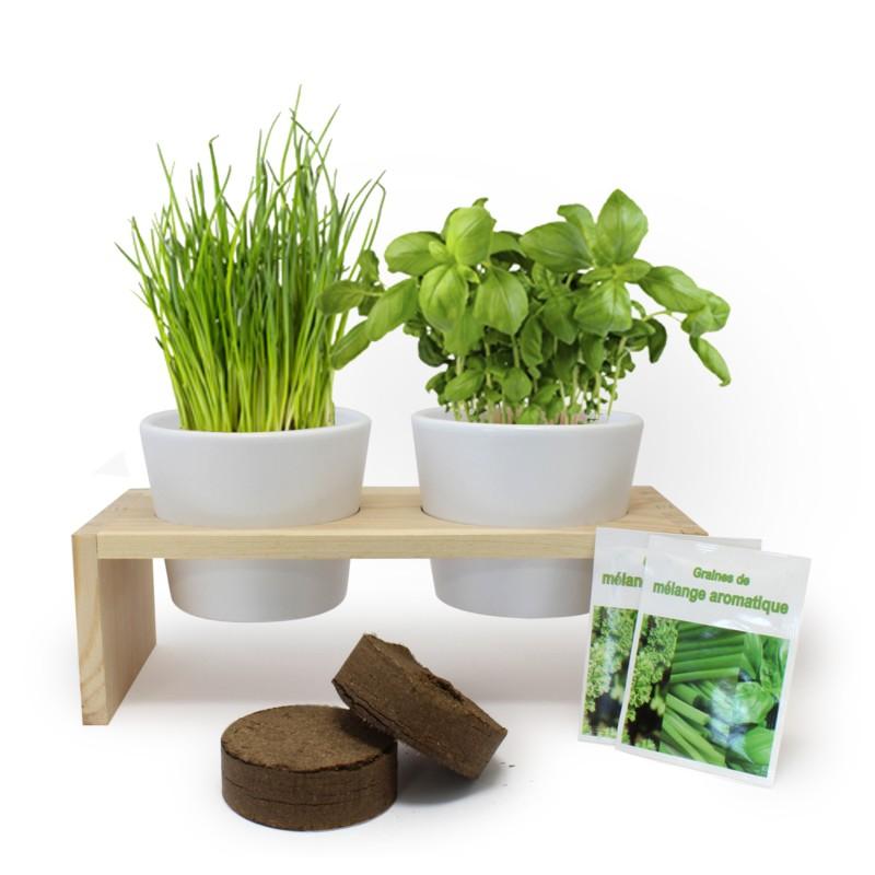 Support Double Pots Avec Plantes Aromatiques Ou Depolluantes