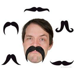Fausse Moustache Flexible et Modulable