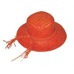 Chapeau de Paille pour Femme de Couleurs Différentes
