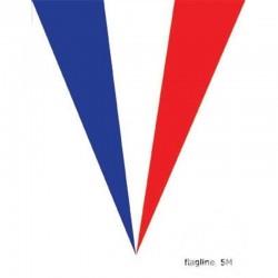 Guirlande France avec 10 Fanions