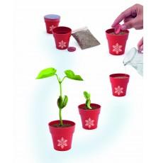 """Pot de Fleurs avec graine à planter de Noël """"Petris"""""""