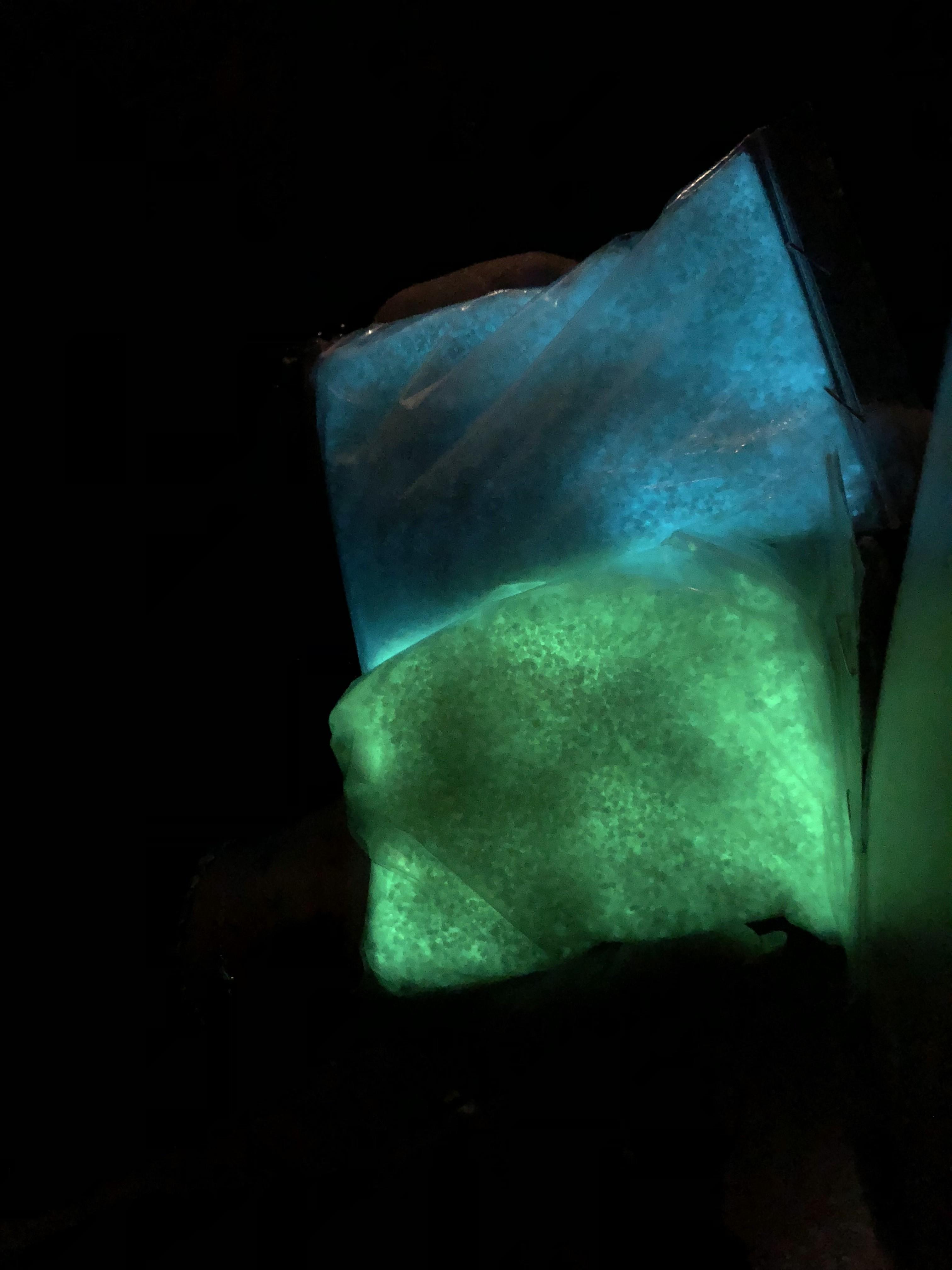Sable fluorescent