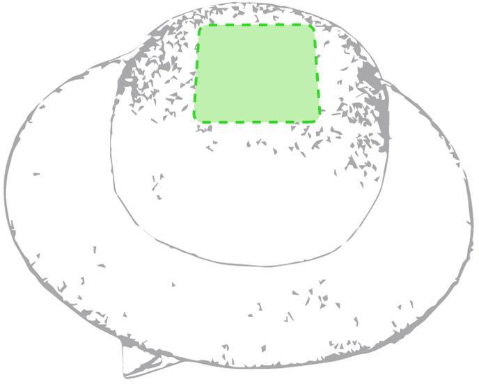 Marquage Barrette tauron